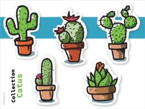 31122018b stickers décoratifs cactus assortiments de cactus illustration dessin