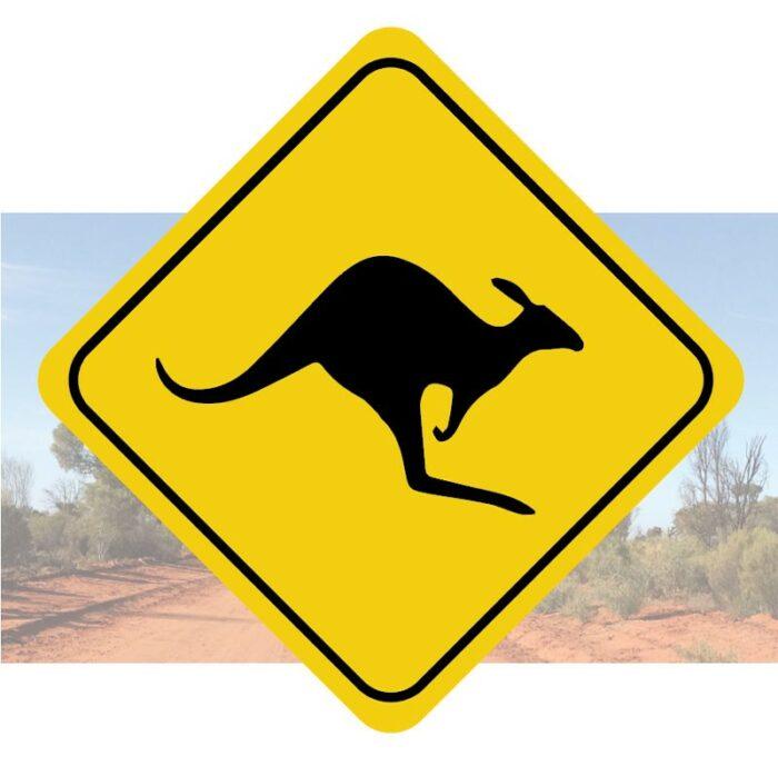 sticker autocollant traversee de kangourou autocollant décoration