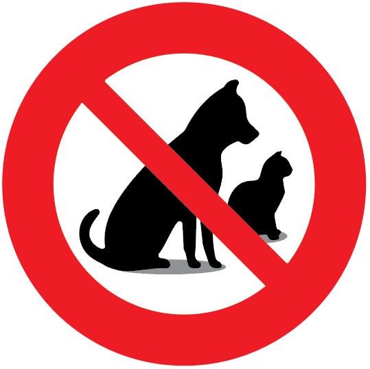 sticker autocollant interdit aux animaux interdit aux chiens interdiction
