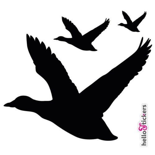autocollants oiseaux migrateurs oies nature chasse – ref 200321b